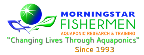 Morningstar Fishermen